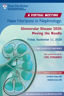 New Horizons in Nephrology:  Glomerular Disease in 2020 - Moving the Needle Banner